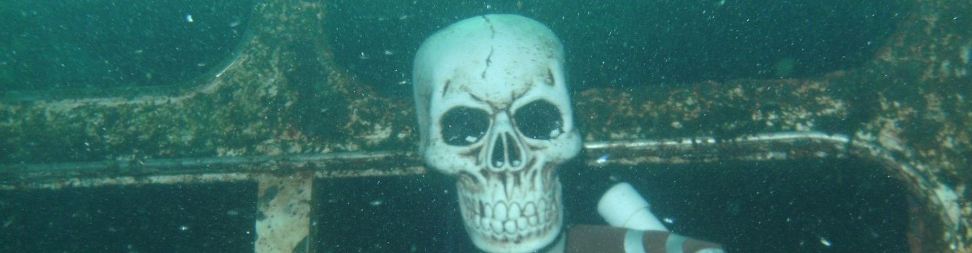 Trick or Treat Dive